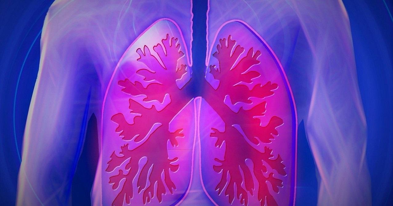 Železno orožje proti tuberkulozi