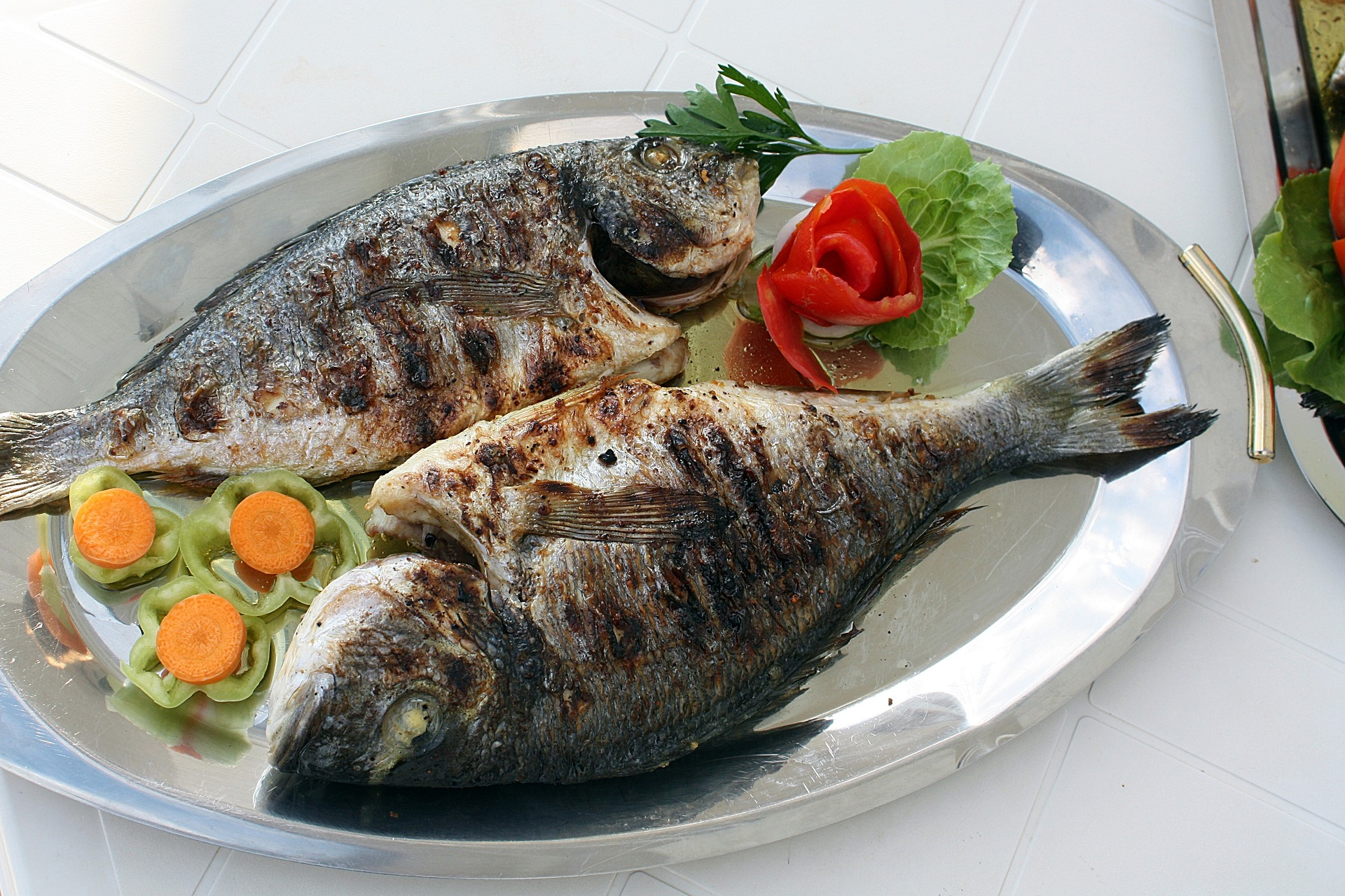 Uživanje rib in možgani