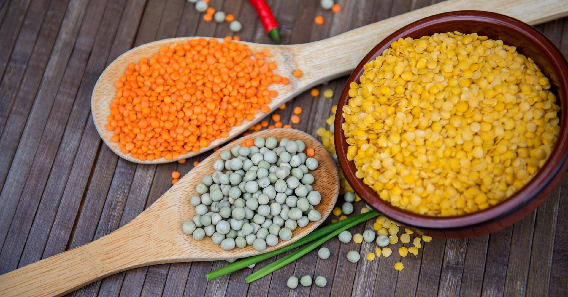 Vpliv prehrane, bogate z beljakovinami, posebno rastlinskimi