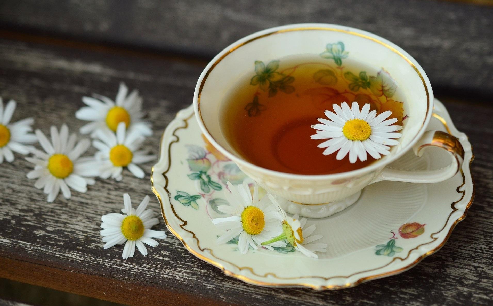 Je spojina iz zelenega čaja zaviralec tumorjev?
