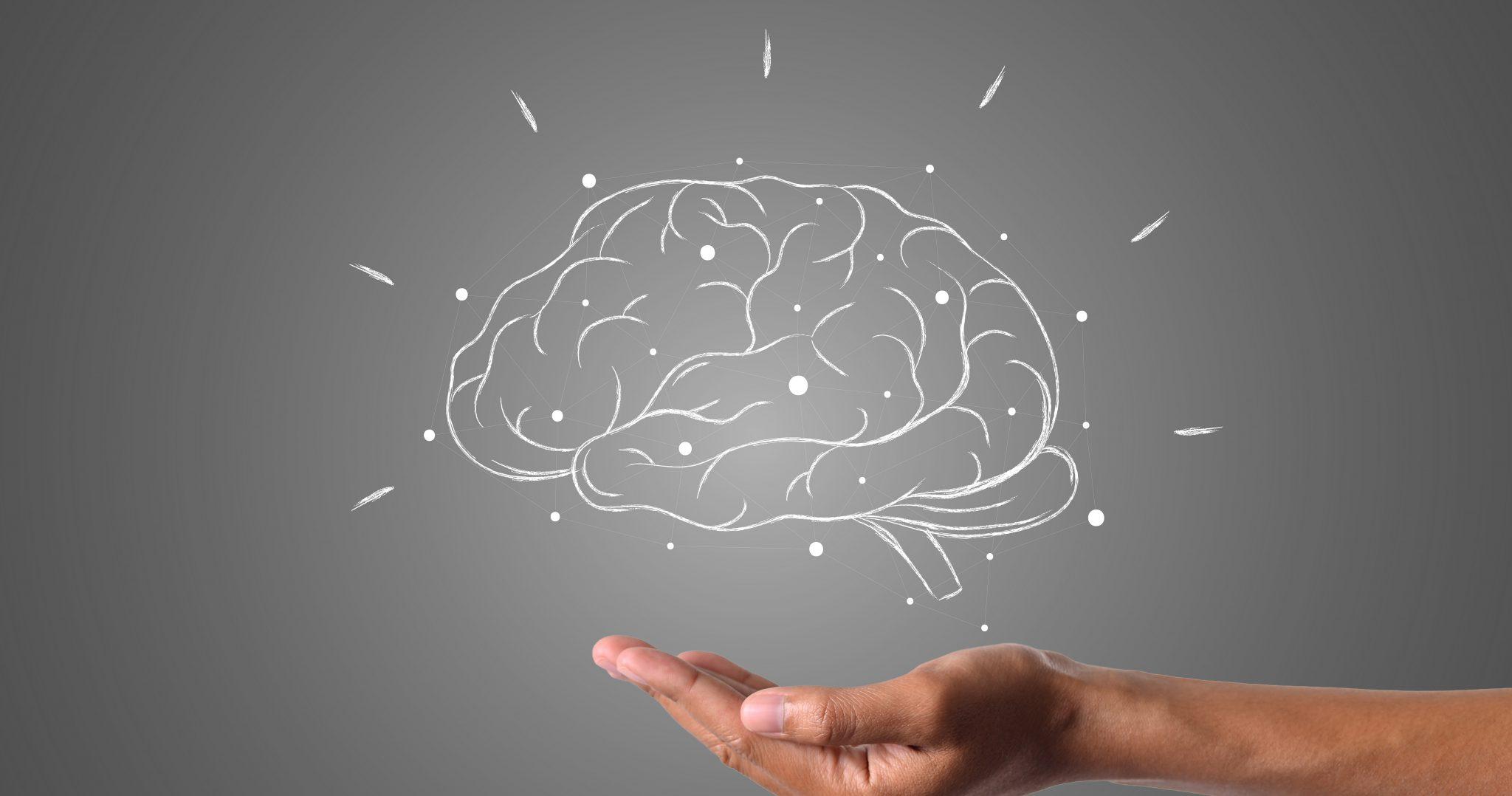Prehrana možganov